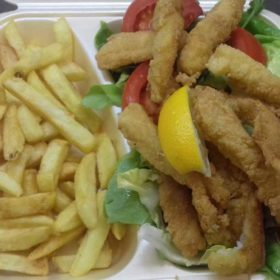 Catfish fillet sticks delivery