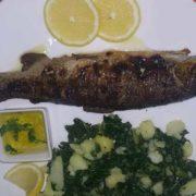 Trout portion