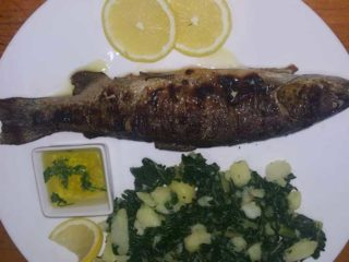 Trout portion dostava