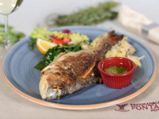 Orada Fontana Restoran dostava
