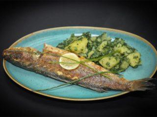 Brancin svež obrok Moderna domaćica dostava