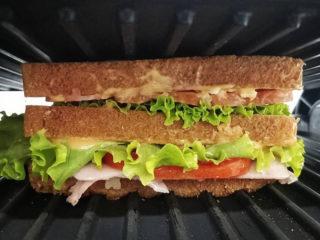 Klub sendvič Pljeskovac Hamburgerija dostava