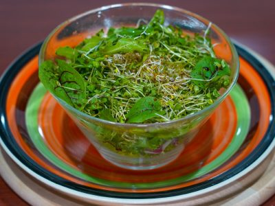 Salad of sprouts Vege House delivery